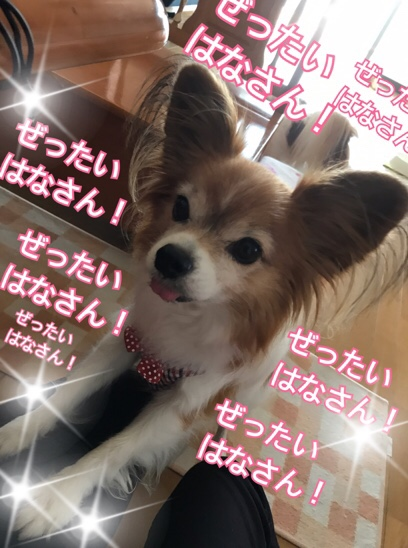 fc2blog_20171027182847c16.jpg