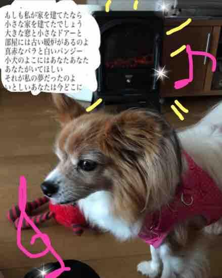 fc2blog_20171114180355ea7.jpg