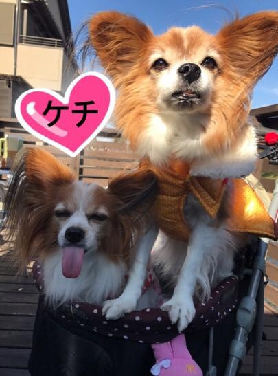 fc2blog_20171125182216527.jpg