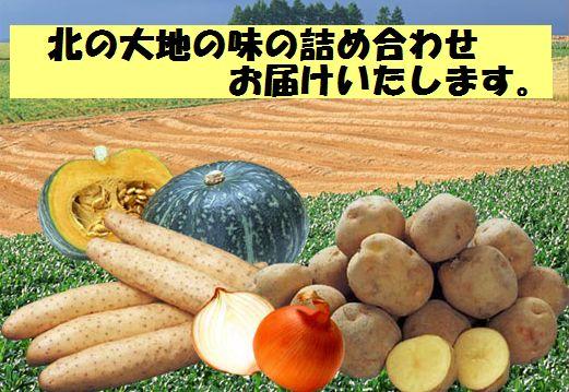 akiyasai-titol600.jpg