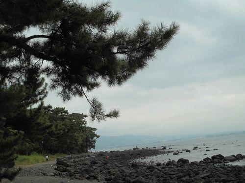 ブログ秋の浜