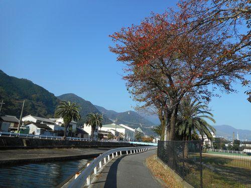 17_11_05朝見川ブログに