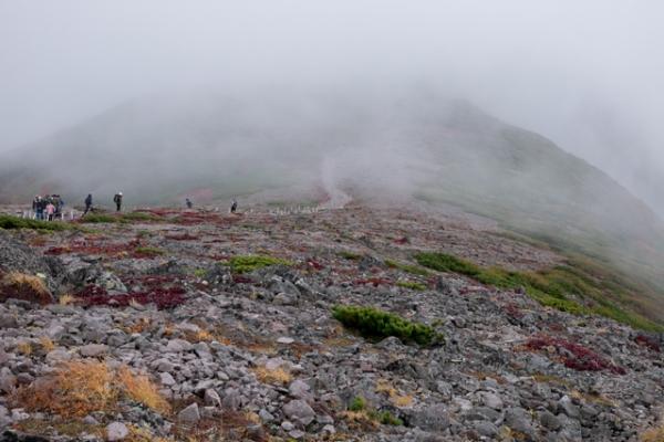 霧の頂上-1