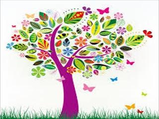 カラー樹_R