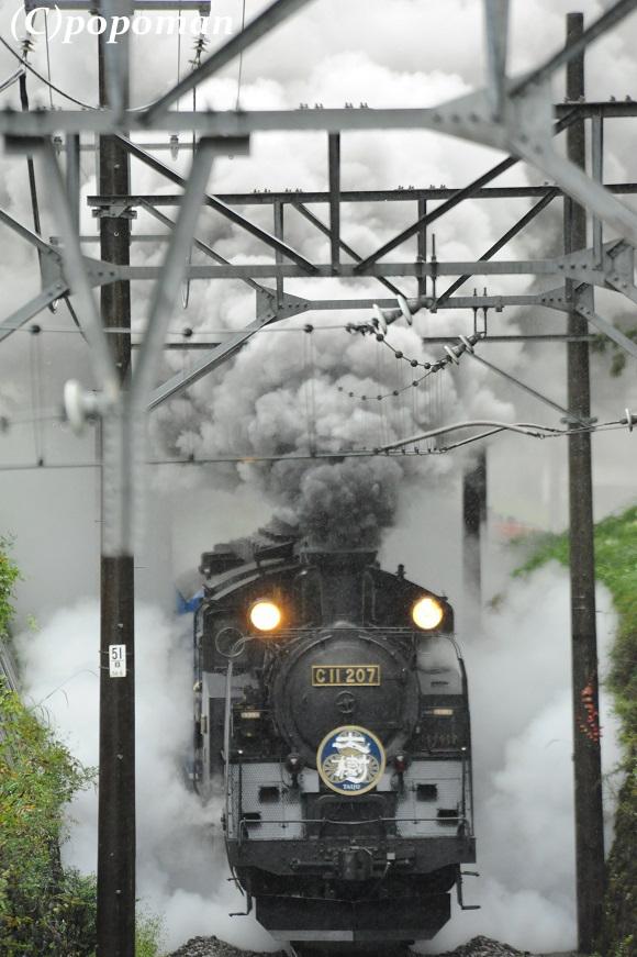 DSC_9641 - コピー2017 10 13 東武鬼怒川線 大桑~新高徳 580 871 popoman