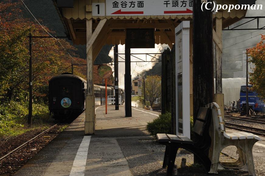 DSC_0257 - コピー2011 11 12 大井川鉄道 家山 871 580 (C)popoman