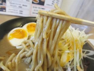 燈 濃厚味噌ラーメン 麺
