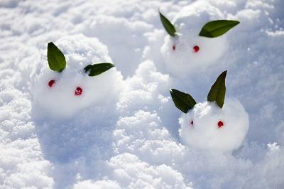 雪うさぎs-
