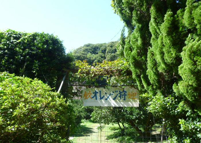 2017,9,30志賀島-12