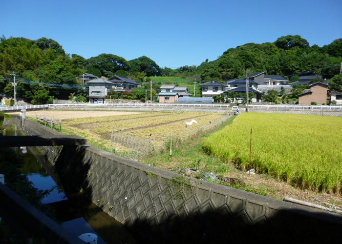 2017,9,30志賀島-4