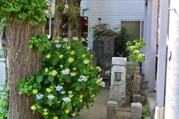 石神井7丁目②