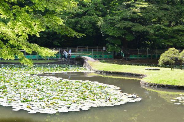 小石川後楽園⑤