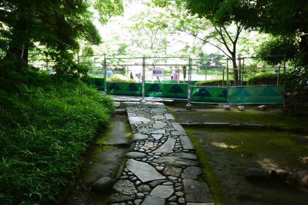 小石川後楽園⑨
