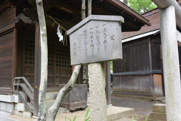 堀ノ内熊野神社②