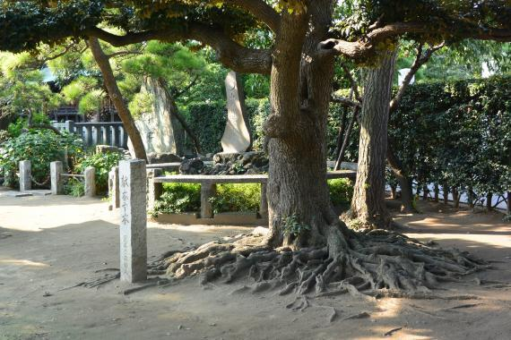 稗田神社②