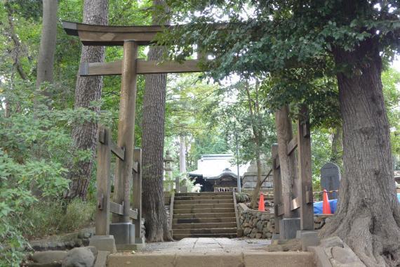 和泉熊野神社④