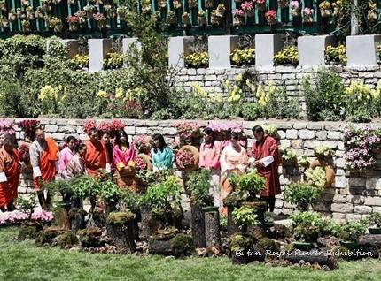 butan-mako-flower-exhibition.jpg