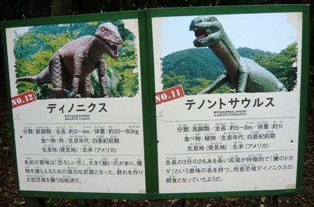 ディノアドベンチャー:11テノントサウルス、12ディノニクス