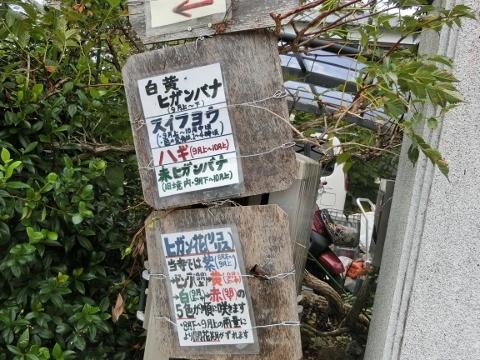 2017-09-23 彼岸花 050 (480x360)