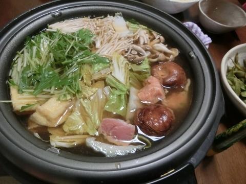 2017-11-03 晩ごはん 008 (480x360)