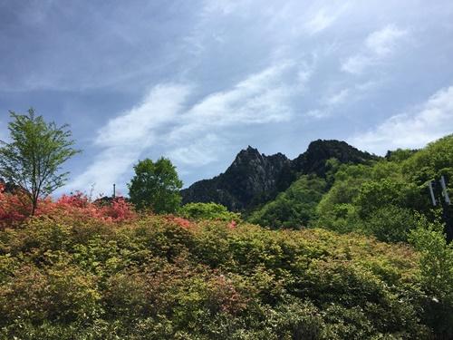 みずがき山自然公園(6月ツツジが咲く頃)