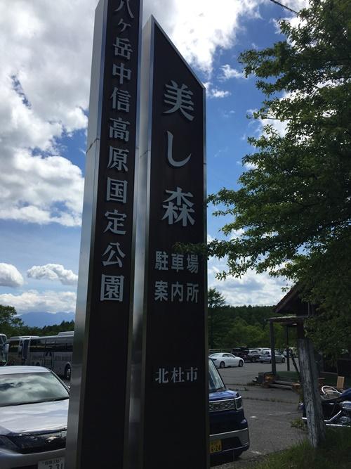 清里・美し森を散策(6月ツツジ)