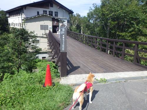 東館山ゴンドラリフト1