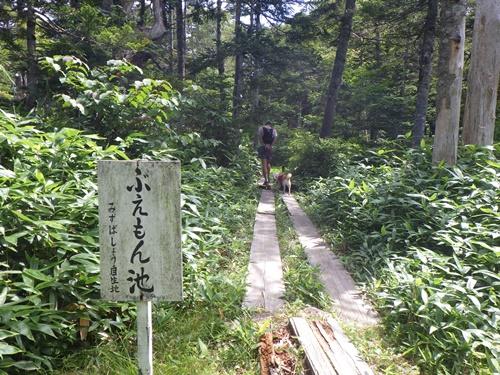 東館山高山植物園7