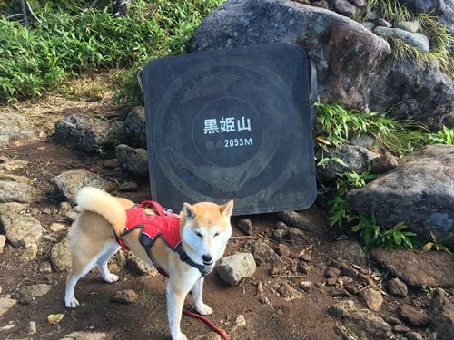 黒姫山・泥んこ登山②(古池→黒姫山山頂→下山)