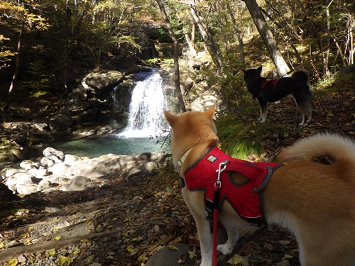 宮川渓谷を散策