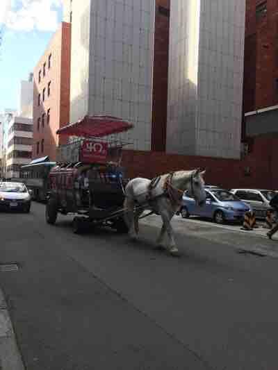 札幌の街に馬車が~