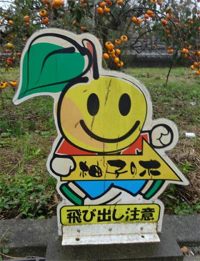 yuzutobidasi.jpg