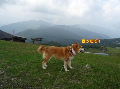5比叡の山