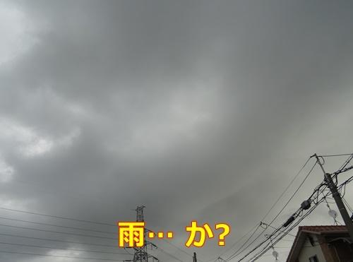 20170830193144bd5.jpg