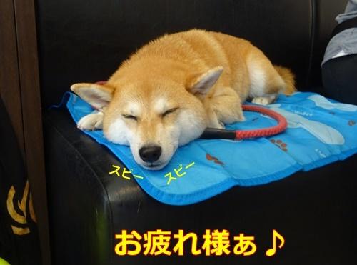 6疲れたね