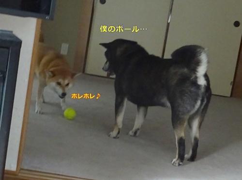 2ボール遊び