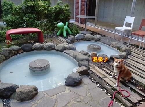 2温泉入って
