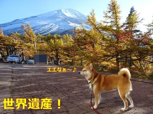 1ヤッパリ富士山