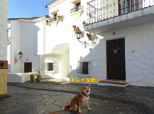 3スペイン