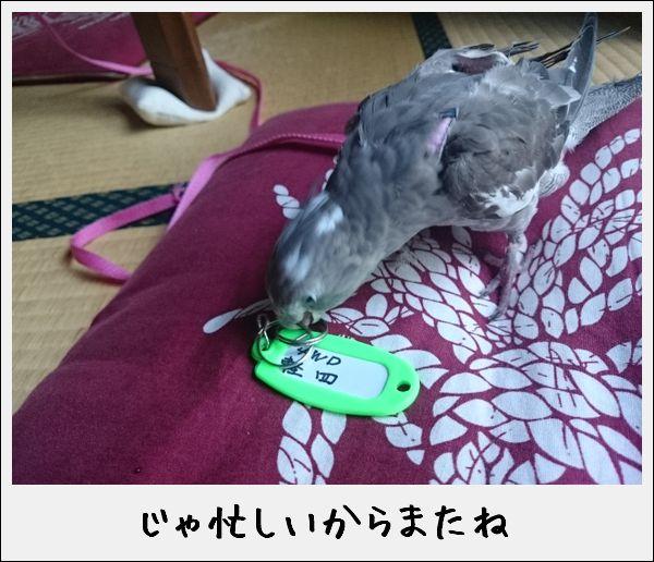 20170717200931add.jpg