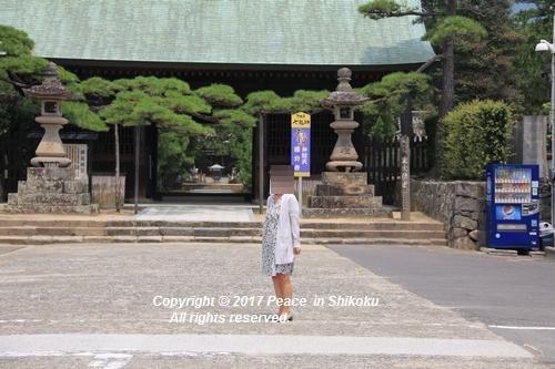 himawari170731-2078.jpg