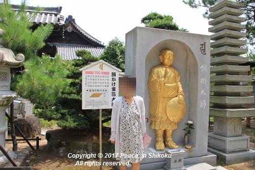 himawari170731-2090.jpg