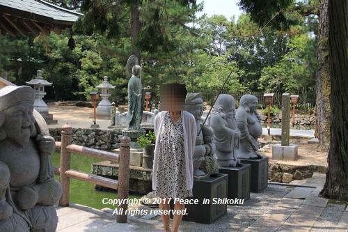 himawari170731-2094.jpg