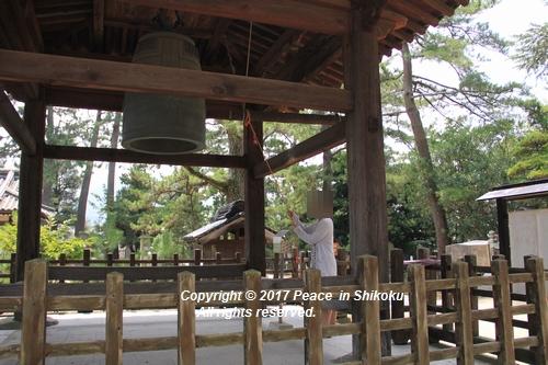 himawari170731-2115.jpg
