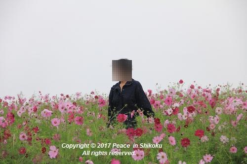 kosumomanou1002-3581.jpg