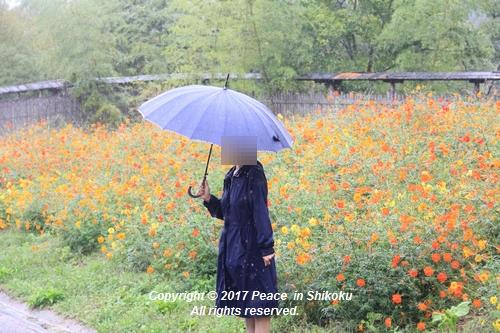 kosumomanou1002-3715a.jpg