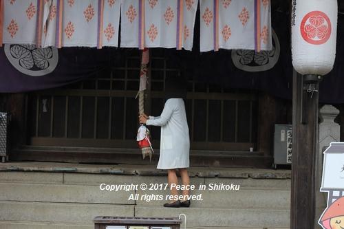 sidoji1016-3770.jpg