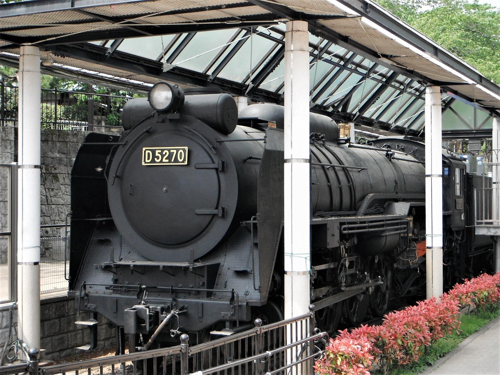 山北鉄道公園D52
