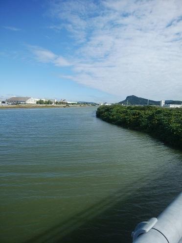 今津湾河口