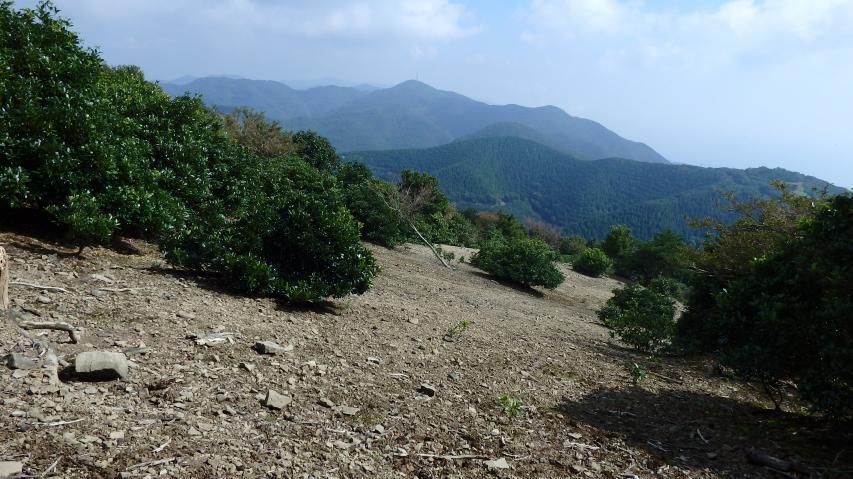 淡路島南部の山